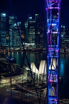 View from the Singapore Flyer.