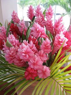 Hawaiian Pink Ginger...