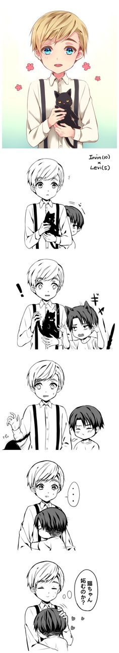 Levi doesn't like to share Erwin