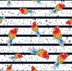 Bird fabric, parrots fabric, cotton fabric, knit fabric, fabric by the yard, stripe fabric, quilting fabric, jungle fabric, parrot prints Bird Fabric, Baby Milestone Blanket, Different Types Of Fabric, Personalized Baby Blankets, Glitter Fabric, Striped Fabrics, Quilting Fabric, Parrots, Baby Month By Month
