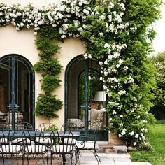 beautiful climbing flowering vine accents this outdoor area