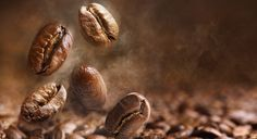 Roasting your own coffee is a satisfying experience which gives us a better-tasting coffee. Read this Ultimate Guide to Roasting Your Own Coffee. Coffee Type, Coffee Shop, Roasting Coffee At Home, Italian Roast Coffee, Cheap Coffee Maker, Make Your Own Coffee, Coffee Ice Cubes, Coffee Reading, Coffee World