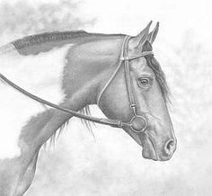 Horse - Painting Art by Heidi Krueger.  /Beautiful EL./