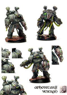 Aphotecarius Space Marine Veteran - no chapter