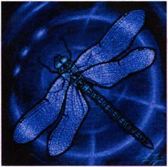 Dragonfly Cross Stitch Pattern - You'll love the vibrant colors and beautiful details in this chart based on artwork by Leia Frazier. In the language of animals, a dragonfly totem is a symbol of transformation. These wondrous creatures are born in water, and live there for several years before they undergo a tremendous metamorphosis, and take to the sky. Darting through the air on gossamer wings, dragonflies teach us to look at all things with different perspectives. Design measures 224…
