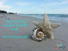 Book an Anna Maria Island vacation rental. You are lucky to have beaches this beautiful to visit
