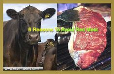 Red meat is one of the most popular meat in America, but despite its popularity, it can really have adverse effects to your health. It can pose a number