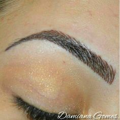Permanent Makeup by Damiana Gomes 2014
