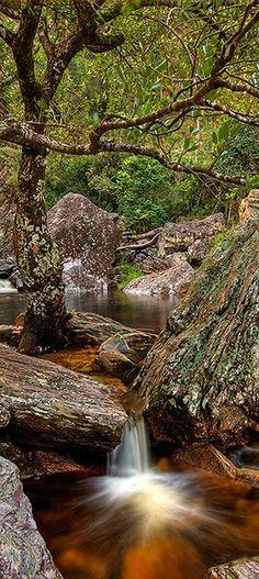 Serra da Canastra - Brazil