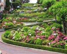 Lombard St., San Francisco