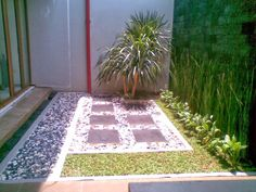 Tukang Taman | Jasa Tukang Taman | Rumput Taman: Tukang Taman Cipete | Pondok Labu | Lebak Bulus | ...