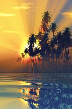 Photo: PUESTA DE SOL EN LAS ISLAS FIYI     Las Islas Fiyi son 333 islas situadas en el sur del Océano Pacífico que tienen preciosas playas, arrecifes de coral y selvas tropicales. La mayoría de la población vive en la isla más grande, Viti Levu, donde se encuentra Suva, la capital.  Oficialmente la República de Fiyi , es un país insular de Oceanía en el océano Pacífico y constituido en una República parlamentaria. No tiene fronteras terrestres. Se encuentra localizada cerca de Australi...