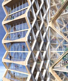 proposed wooden skyscraper by perkins + will explores the potential of tall timber buildings