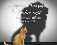 Kauniita ajatuksia | Valonpolku Funny Texts, Cool Words, Kittens, Poems, Thoughts, Sayings, My Love, Quotes, Life