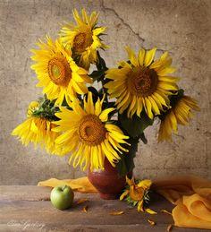 Натюрморты от Elen Gardzey . Sunflower Colors, Sunflower Pictures, Sunflower Art, Sunflower Garden, Still Life Photography, Flower Wallpaper, My Flower, Flower Arrangements, Beautiful Flowers