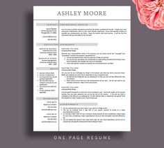 Resume Template CV Template Word for Mac or PC Professional
