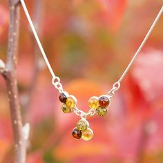 Baltic Amber and Sterling Silver Trilogy Necklace Autumn