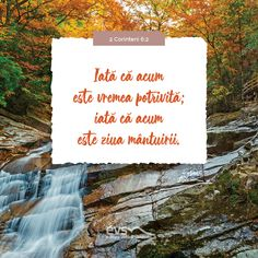 2 Corinteni 6:2 Cards Against Humanity, Alba, Cover, Books, Bible, Libros, Book, Book Illustrations, Libri