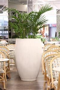 Martin Kellock Pots & Planters || Westfield Bondi Project Westfield Shopping Centre, Hothouse, Types Of Painting, Garden Pots, Garden Ideas, Paint Finishes, Terracotta, Greenery, Modern Design