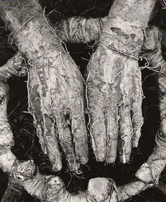 """Dieter Appelt, """"aus Erinnerungsspur (vergraste Hände), (Weed growth of the hands), 1978-79. via"""