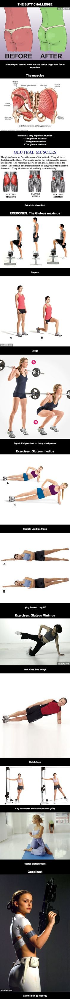 Butt Challenge -- exercises for gluteus maximus, gluteus medius, and gluteus minimus