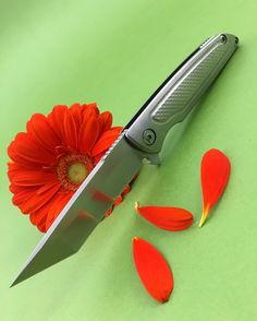 Brian Nadeau  #BrianNadeau #knifegasm #knifenuts #knifepics #knifeporn #knifecommunity #knifecollection #русскийножевойинстаграм #usnstagram #knifefanatics #knifeaction #bestknivesofig #knifestagram #allknivesdaily #customknives #knife #knifemaking #knifeaddiction #handmadeknives #handmade #myknife #custommade #knifegasm #knifecommunity #knifepics #grailknives #ЧастнаяКоллекция #MariaKnives