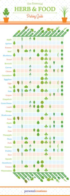 Herb Pairing Food Guide from Personal Creations.   busy mom, healthy mom, health and fitness, healthy food, health tips