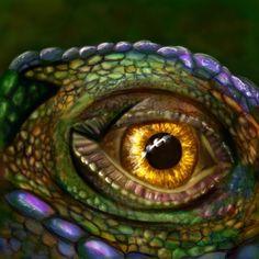 Les Reptiles, Reptiles And Amphibians, Reptile Eye, Iris Eye, Polychromos, Dragon Eye, Deviant Art, Exotic Pets, Cool Eyes