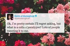 Best of Colin on Twitter 2013