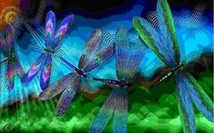 Dragonfly-Welcome-Home