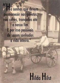 Image by Sonia Ribeiro