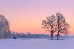***Winter sunrise (Lithuania) by RE~gi~NA / 500px