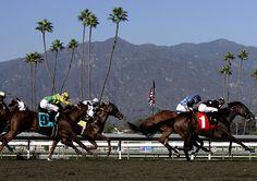 Santa Anita Park, Race Track, Horse Racing, Arcadia
