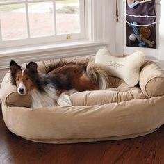 Dog Comfy Couch Large | Pet Products | SkyMall