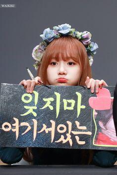 181109 Sangam S-Flex fan signing Kpop Girl Groups, Kpop Girls, Yuri Gif, Fandom, Japanese Girl Group, Pretty And Cute, The Wiz, Korean Girl, Ulzzang
