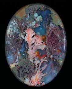 Priday plume agate - looks like an underwater scene
