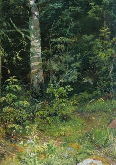 Ivan Shishkin Birch and mountain ash -  Looks like one of those places whose location one would guard jealously