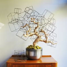 Wire Cubes. Bonsai gone haywire? Lol, sometimes it's how I feel when things don't go according to plan.