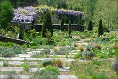 Gravel garden at Chanticleer, April 2012 - looking down the stone steps.
