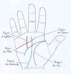 Les lignes de la main