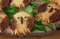 Biscuits sablés chouettes-hiboux...