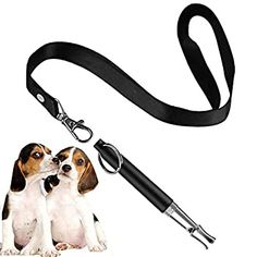 HEHUI Dog Whistle to Stop Barking-Professional Silent Dog Whistle Training for Recall -Adjustable Frequency Ultrasonic Sound Training Tool- Pack of Pet Whistle with 1 Free Free Lanyard Strap ** Click image for more details. (This is an affiliate link) Therapy Dog Training, Service Dog Training, Best Dog Training, Therapy Dogs, Service Dogs, Professional Dog Training, Dumb Dogs, Dog Walking Business, Dog Whistle