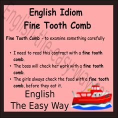I need to check this ____________.  1. well 2. with a fine tooth comb 3. both http://english-the-easy-way.com/Idioms/Idioms_Page.html #EnglishIdom