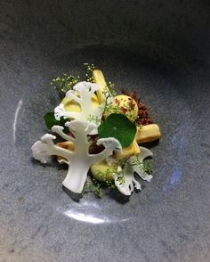 Curried Parsnips and Cauliflower Close Up Parsnip and Cauliflower Roasted, Iced and Curried Mousse, Jamon Crumb, Pepper Flowers
