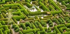 Hedgend Maze and Lazer Strike Healesville | Visit Melbourne's Yarra Valley…