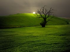 Photograph Campo Andaluz - Andalusian countryside by Francisco García Ramírez on 500px