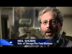 Evolution - What Darwin Never Knew - NOVA PBS Documentary - YouTube.  Kinda long, but one of the best videos I have watched.