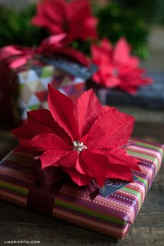 DIY Paper Cocktail Napkin Poinsettia | Lia Griffith