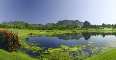 Read our guide to playing the Fancourt Outeniqua Golf Course in South Africa. Eagle Golf Tours is ATOL Protected. Famous Golf Courses, Public Golf Courses, George South Africa, Coeur D Alene Resort, Golf Images, Golf Holidays, Golf Course Reviews, Leading Hotels, Golf Tour