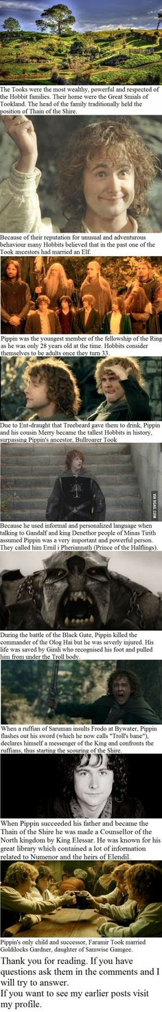 10 Peregrin Took facts you may not have known, except Denethor is not king